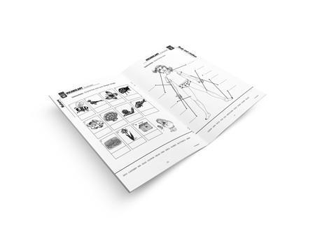 My exercice book - Lot de 15 cahiers