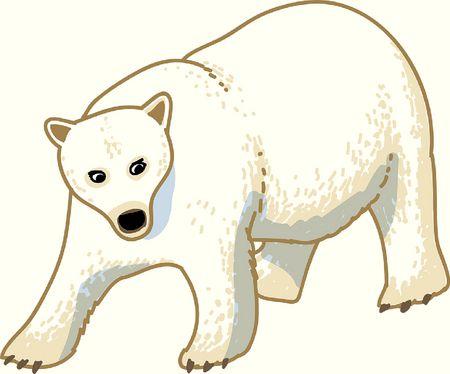 La frousse de l'ours
