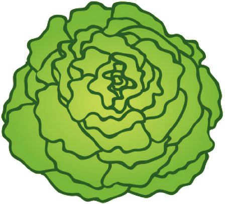 Le potager du jardinier
