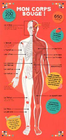 Le livre du corps humain