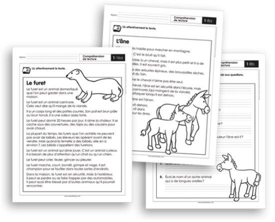 Français 1 - Compréhension de lecture CP Les animaux domestiques - Fiches reprod